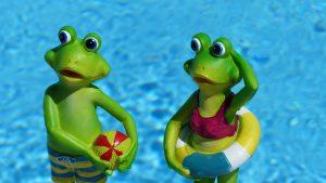 kikker zwembad tikibad